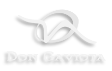 Don Gaviota logo